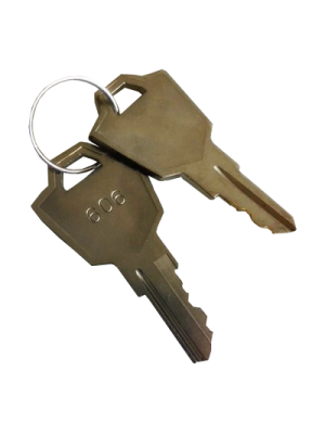 Replacement scooter keys